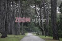 17042006_nacionalni_park_brijuni_foto_sasa_cetkovic