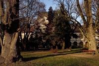 dvorac_pejacevic_u_virovitici