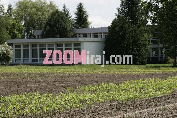 13062006 bc institut  za oplemenjivanje i proizvodnju bilja zavod za kukuruz proizvodnja hibridnog sjemenskog kukuruza rugvica zg foto sasa cetkovic