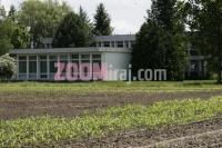 13062006_bc_institut_za_oplemenjivanje_i_proizvodnju_bilja_zavod_za_kukuruz_proizvodnja_hibridnog_sjemenskog_kukuruza_rugvica_zg_foto_sasa_cetkovic